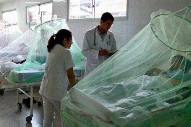 El paludismo, una grave enfermedad tropical